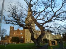 St Mary's, Buckden, Buckden Towers and the churchyard's ancient oak tree