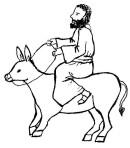 donkey001
