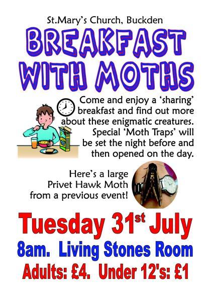 Moths Breakfast 3107181